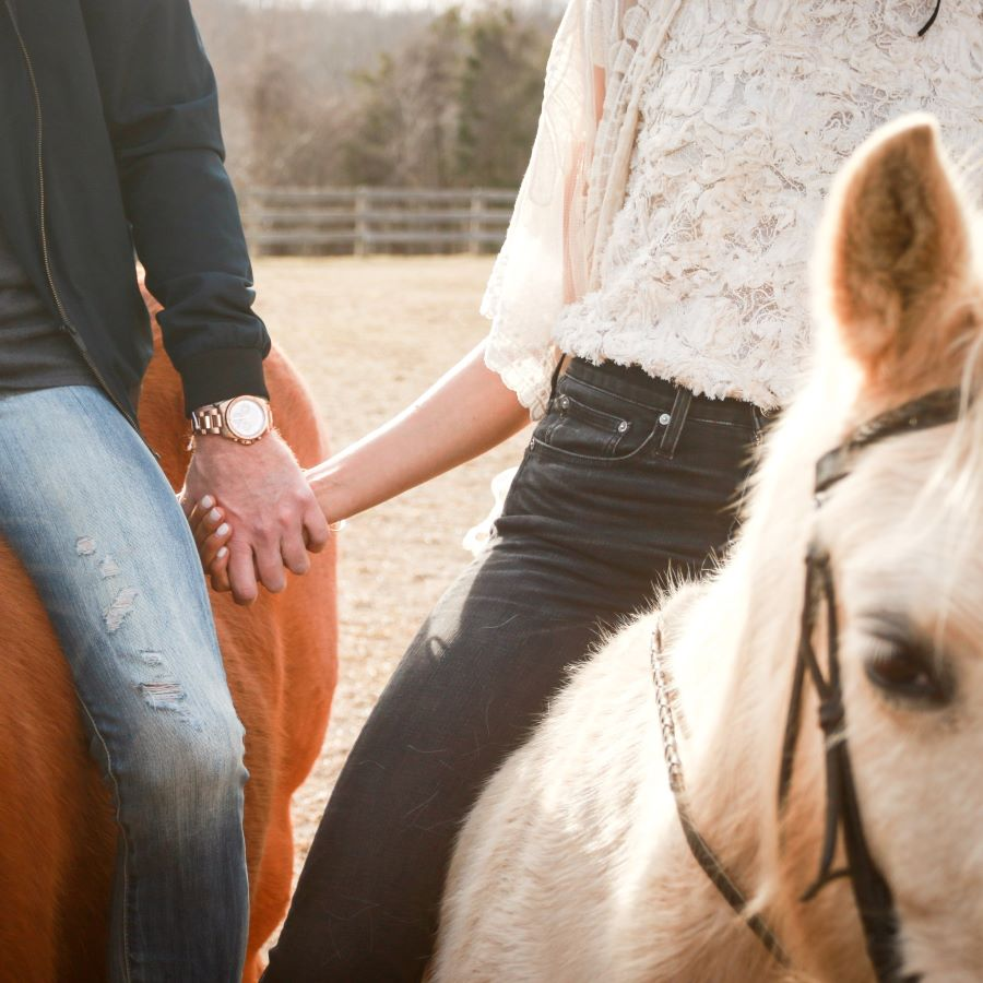 Izjāde ar zirgu pārim