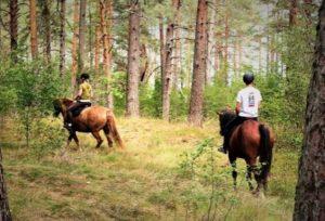 izjāde ar zirgu diviem