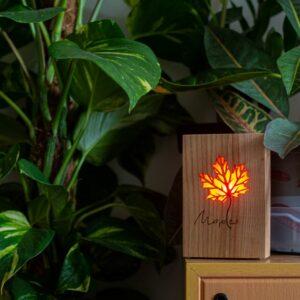 Maple Co2 gaisa kvalitātes monitors